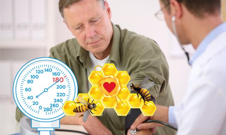 Лечение гипертонии пчёлами