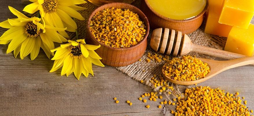 Лечение поясничной грыжи пчелами thumbnail